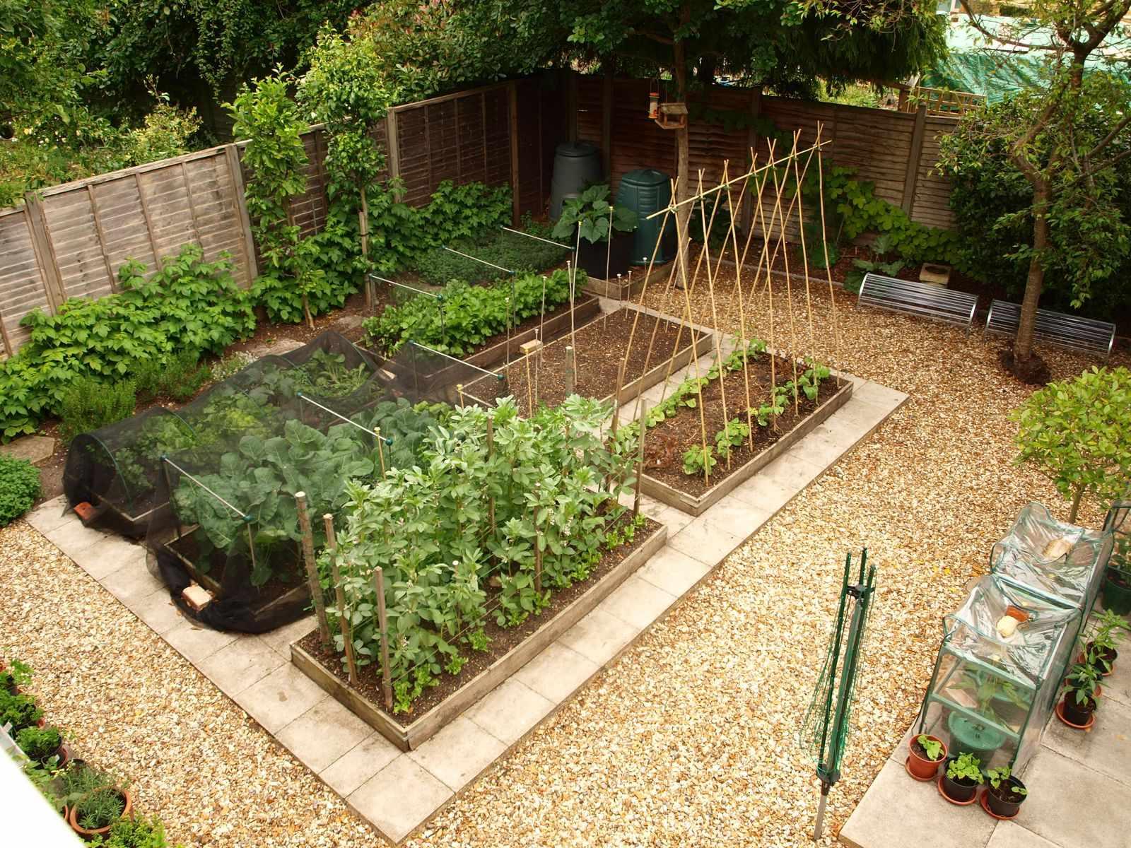 Садово-огородная зона на участке