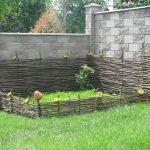 Подсолнухи на заборе