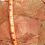 Укладываем листья в корзину и размещаем бутоны