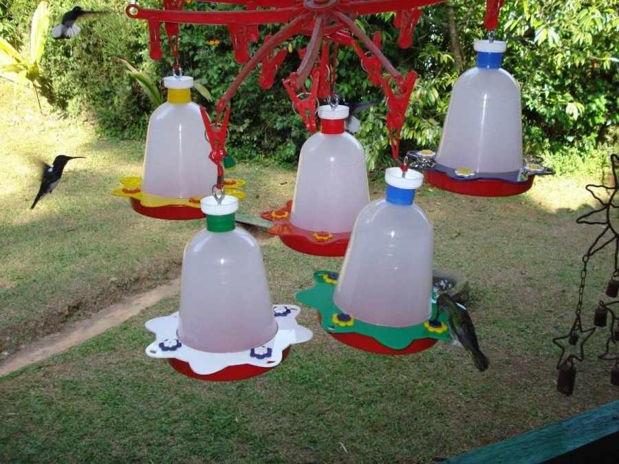 Кормушки для птиц из бутылок
