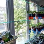 Полки из стекла для цветов