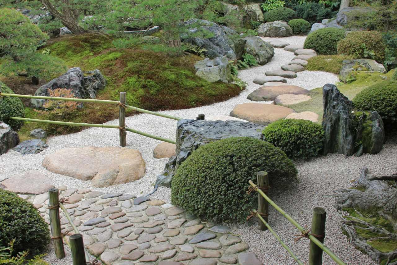 Растения в саду камней