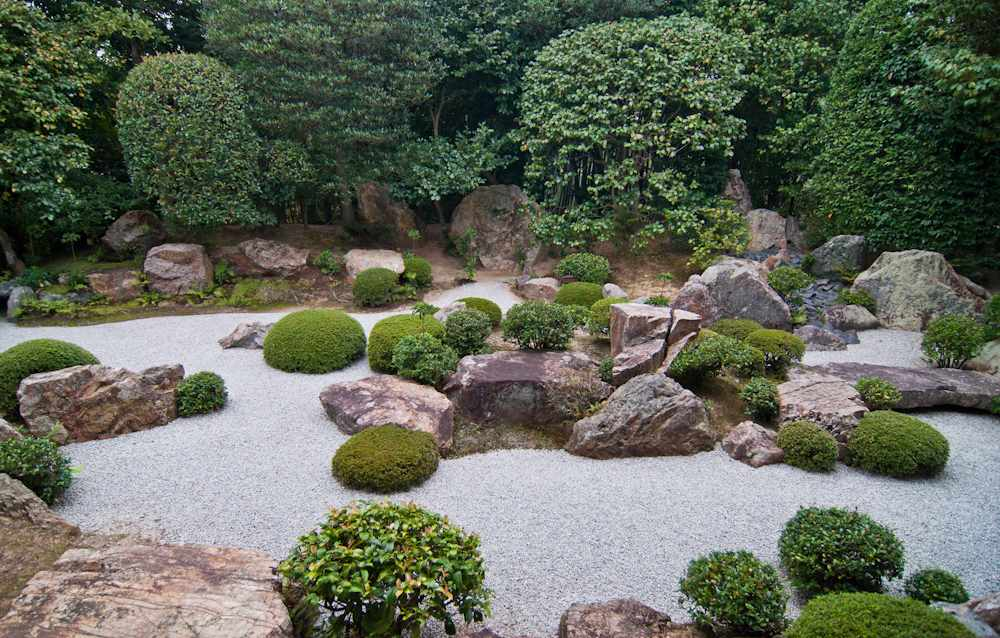 Уход за садом камней