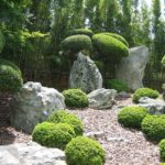 Кустарники вдоль каменной руки