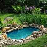 Озеленение участка вокруг искусственного водоема