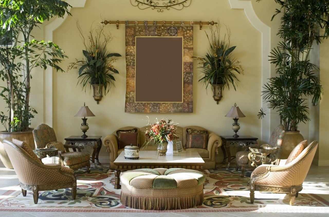 Диван, кресла, столик и много комнатных растений
