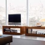 Телевизор у окна
