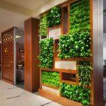 Озеленение в доме