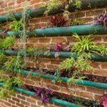Трубы для растений
