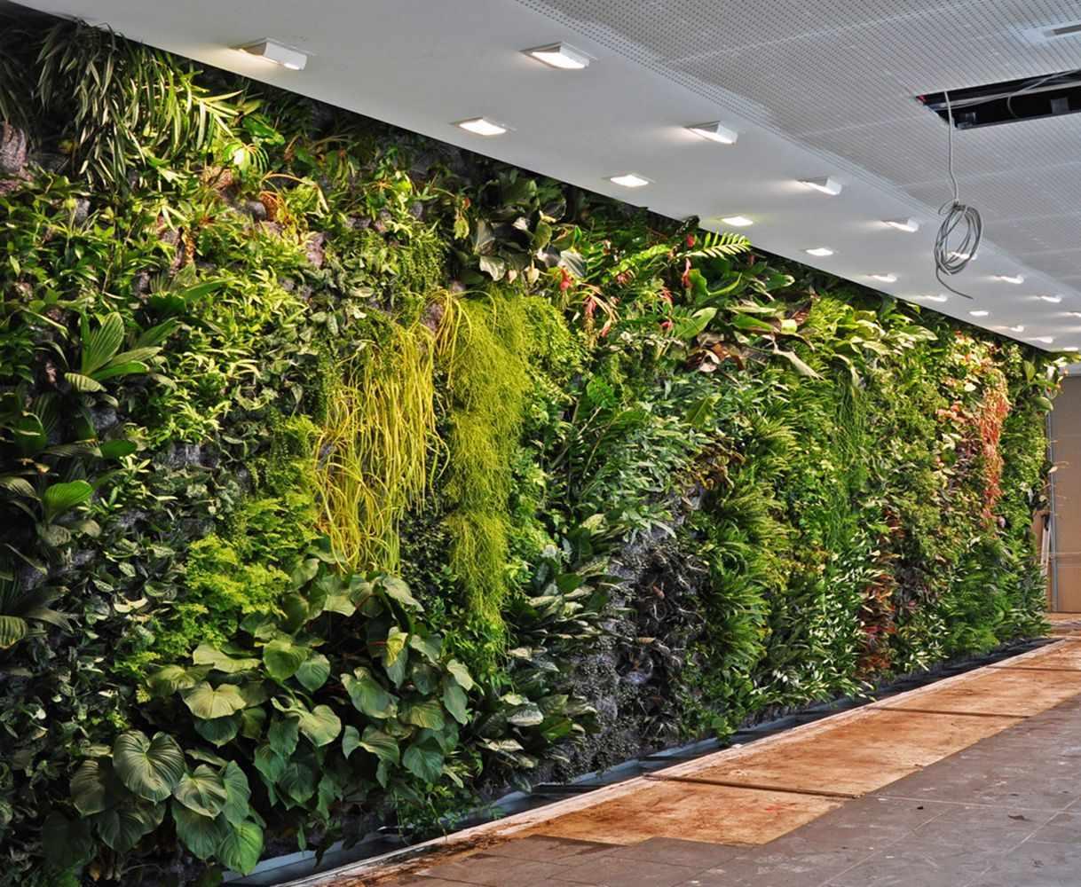 Садовая стена