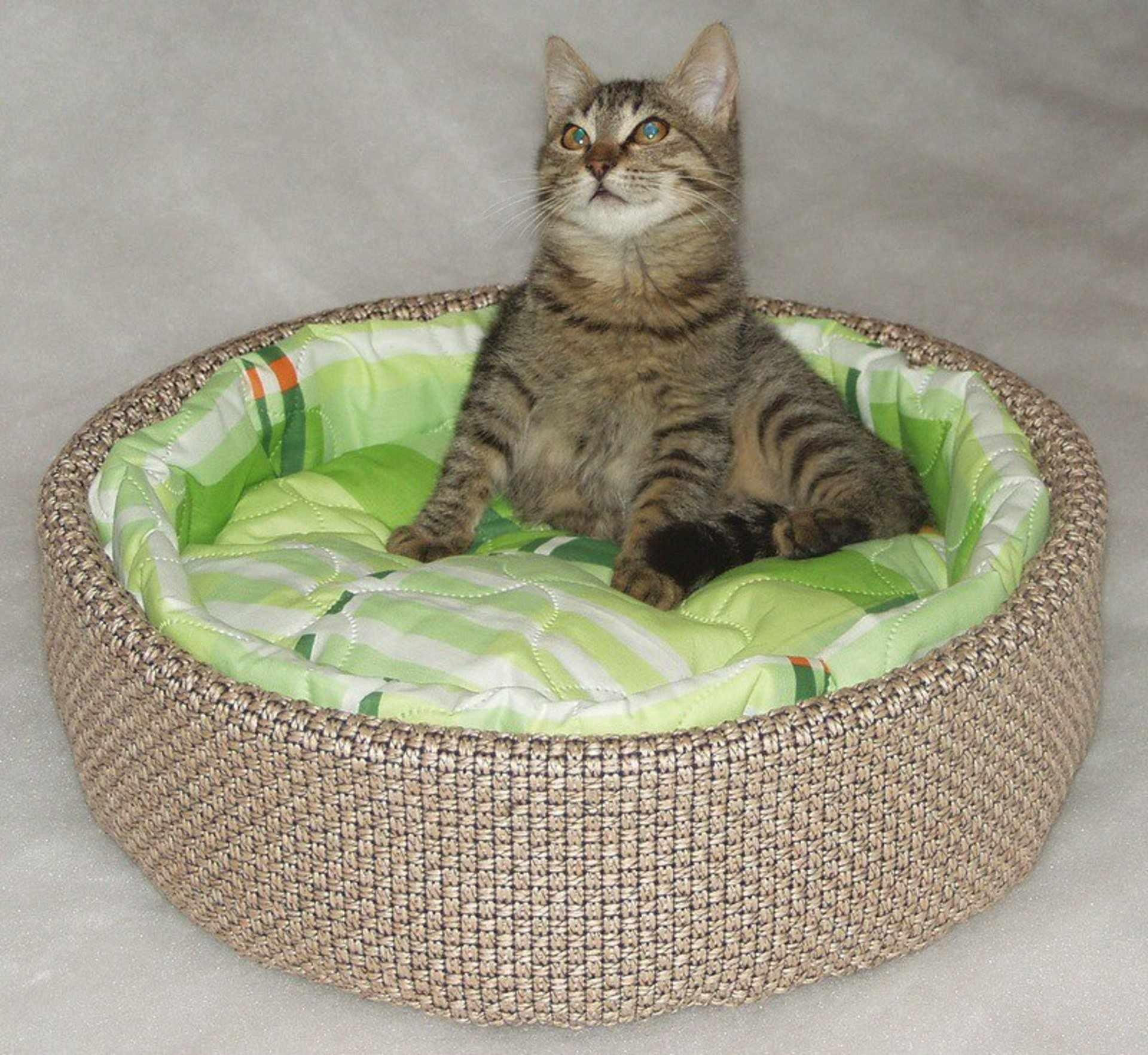 Лежак из плотной ткани для кота